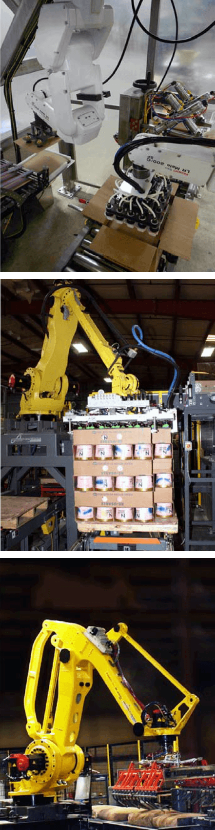robotic case packing palletizing